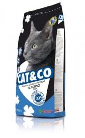Cat&Co witn Fish